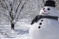 Картинка снеговик, Новый Год, снег, зима, природа, деревья, New Year, Christmas, Рождество, пейзаж