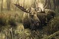Картинка лось, ручей, деревья, трава, осень, лес