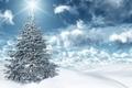 Картинка солнце, небо, ёлочка, снег
