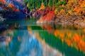 Картинка деревья, озеро, отражение, осень, горы