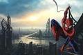 Картинка city, spider man, building