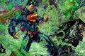 Картинка Супермен, зеленый фонарь, драка.злость