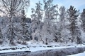 Картинка деревья, речка, снег, лес, зима