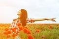 Картинка поле, свобода, листья, девушка, солнце, радость, цветы, красный, улыбка, фон, обои, настроения, женщина, мак, растения, ...