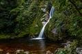 Картинка водопад, кусты, мох, Новая Зеландия, лес, Hokitika, ручей, камни
