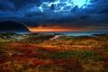 Картинка море, небо, трава, закат, скалы, темное