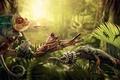 Картинка свет, игуана, ящерицы, стрекоза, змея, лягушка, папоротник, улитка, джунгли, черепаха