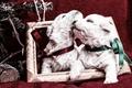 Картинка Животные, собаки, щенки, щенята, пара, рамка, ленты