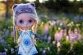 Картинка игрушка, шапочка, поле, кукла, косички, трава, шапка