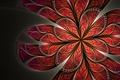 Картинка цветок, узор, лепестки, арт, красный