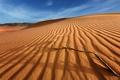 Картинка дюны, ветка, барханы, небо, пустыня, облака, песок