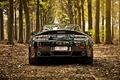 Картинка foliage, v12, vantage, деревья, астон мартин, tree, листья, black, черный, back, Aston martin