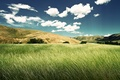 Картинка Green Valley, Зеленная Долина, Природа, Красота