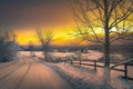 Картинка снег, зима, зарево, дорога, деревья, вечер, небо, облака
