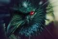 Картинка ворон, глаз, tsxworld, Наруто, Naruto, шаринган, art
