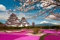 Картинка ветки, парк, замок, вулкан, Япония, сакура, Japan, цветение, Mount Fuji, Фудзияма, Фукусима, Fukushima, Aizuwakamatsu, Aizuwakamatsu ...