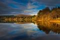 Картинка деревья, осень, Англия, озеро