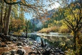 Картинка горы, деревья, Калифорния, лучи солнца, лес, ручей, Йосемити, осень, камни, США