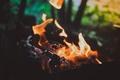 Картинка макро, шашлык, костер, угли, огонь