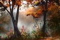 Картинка нарисованный пейзаж, деревья, осень, арт, лес