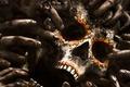 Картинка fingers, zombie, poster, zombie apocalypse, Fear the Walking Dead, The Walking Dead, Mexico, nails, Baja, ...
