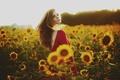 Картинка лето, девушка в красном, подсолнухи