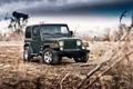 Картинка Jeep Wrangler Sahara, фон, машина