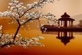 Картинка Сакура, Sakura, Восточные пейзажи, дома на воде, house on the water, Eastern landscapes