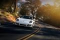 Картинка Car, Sun, Sport, White, Porsche, Speed, Front, 2013, Boxster