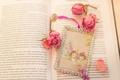 Картинка цветы, лепестки, розы, книга