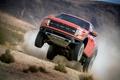 Картинка трава, Ford, пыль, джип, внедорожник, форд, Raptor, пикап, передок, раптор, свт, ф-150, F-150, SVT