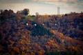 Картинка ducks, power line, farmland, autumn colors, flight, autumn, fall, flying, farm, winter is coming, fall ...