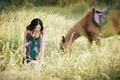 Картинка конь, лето, прогулка, трава, лошадь, платье, азиатка