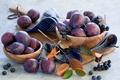Картинка листья, ягоды, ветка, сливы, арония, черноплодная рябина