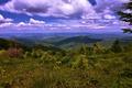 Картинка горы, панорама, облака, Украина, ландшафт, Карпаты, леса