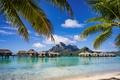 Картинка пальмы, paradise, берег, palms, пляж, sea, песок, море, sand, shore, beach, summer, tropical