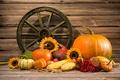 Картинка vegetables, овощи, autumn, тыква, натюрморт, урожай, still life, осень, harvest, pumpkin