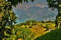 Картинка солнечно, поля, Италия, горы, Monte Isola, деревья, озеро, красиво, Lombardy, HDR, ветки