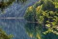 Картинка осень, лес, отражение, Германия, Бавария, Germany, водная гладь, Bavaria, Lake Eibsee, озеро Айбзее