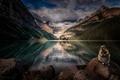 Картинка горы, природа, грызун, Alberta, Canada, озеро, Lake Louise, лес