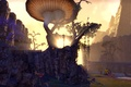 Картинка древние свитки, TESO, The Elder Scroll Online, солнце, пейзаж, The Edlder Scrolls, eso