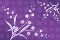 Картинка цветы, фиолетовый фон, обои, абстракции, листья