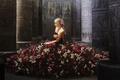 Картинка поза, цветы, живопись, модель, розы, колонны, девушка, сидит, платье