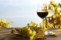 Картинка стол, белое, виноград, виноградники, вино, красное, листья