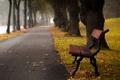 Картинка город, улица, Autumn bench