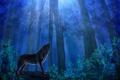 Картинка лес, небо, листья, деревья, ночь, животное, волк, хищник, живопись, синее, нуна
