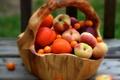 Картинка размытость, персики, абрикосы, Корзина