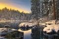 Картинка озеро, лес, зима
