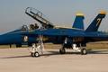 Картинка самолет, u.s.navy, blue angel, usa, истребитель