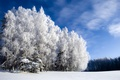 Картинка иний, холодно, зима, Winter is beautiful but cold, небо, лес